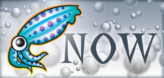 squid proxy server