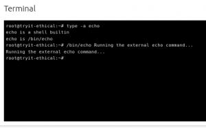 echo commands